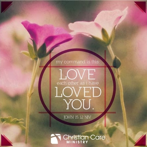 Love Each Other As I Have Loved You: 183 Best Jesus -- Do You See Jesus? When You Have Done It