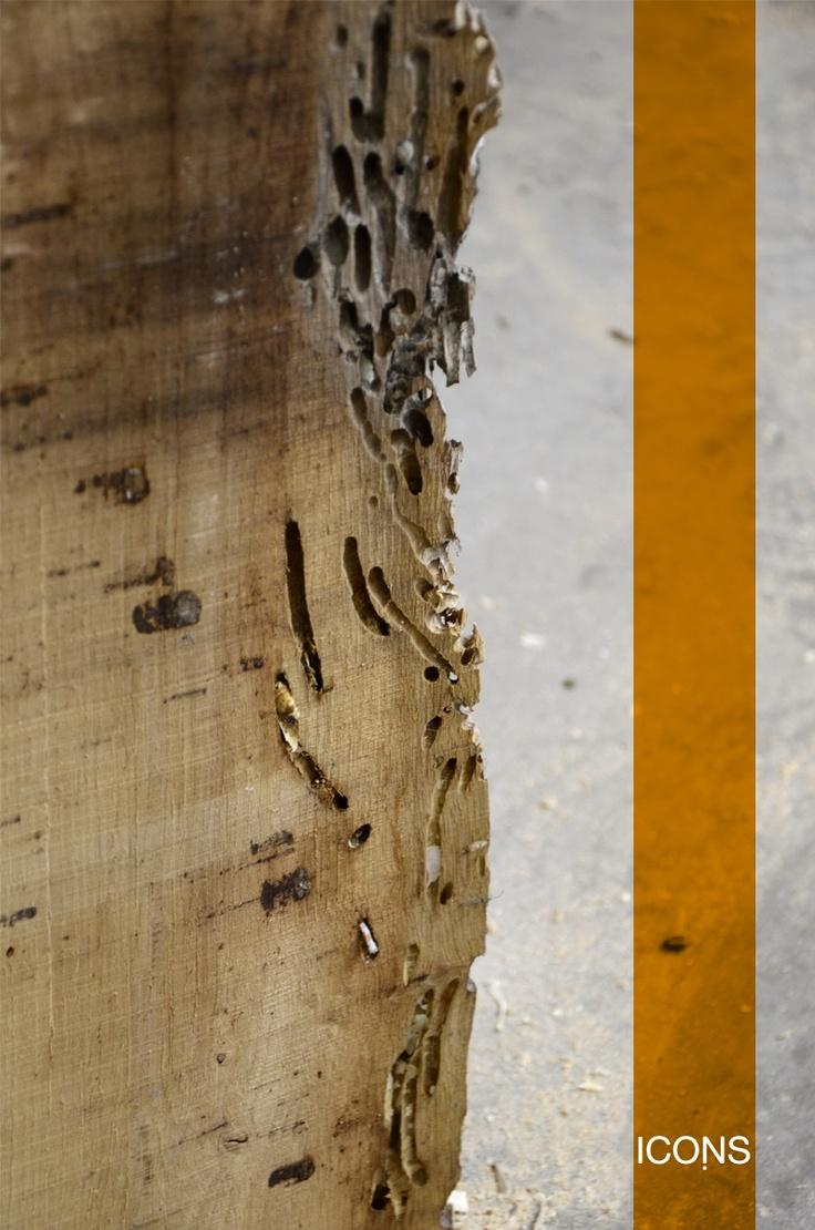 #Detail of #Oak #Wood of the #Briccola. / #Dettaglio del #legno di #rovere della #briccola. #iconsfurniture #icons #furniture #design #vintage #grunge