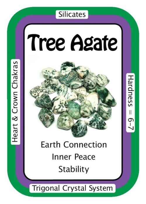 """Crystal Card of the Day: Tree Agate, """"I am connected to the natural cycles of life."""" Considered to be a Talisman in some parts of India, Tree Agate is a stone of inner peace. Gentle Tree Agate calms nerves and can be combined with Clear Quartz to deepen meditation and prayer. Tree Agate can assist those who need to recognize the importance and influence of cycles in one's life. Tree Agate brings our focus to the oneness of us all, dissolving egoism and arrogance. Use Tree ..."""
