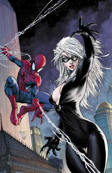 Spider-Man and the Black Cat by the late Michael Turner