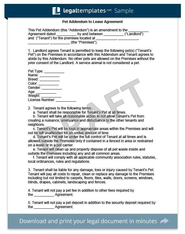 Pet Addendum Template Lease Agreement Tenancy Agreement Being A Landlord