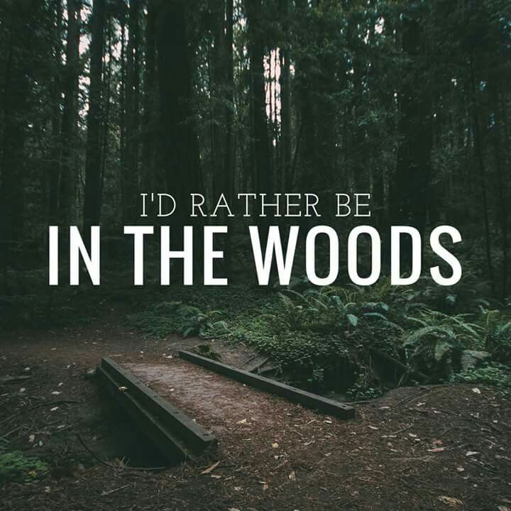 Quotes About Nature: 1000+ Images About Nature Quotes On Pinterest
