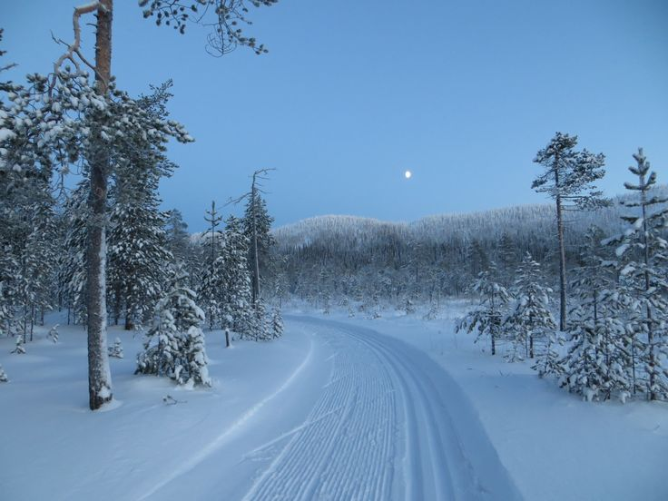 Skiing track to Lake Konttainen