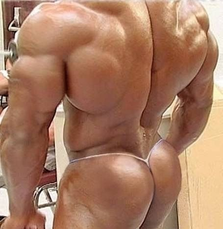Build a muscle men ass opinion
