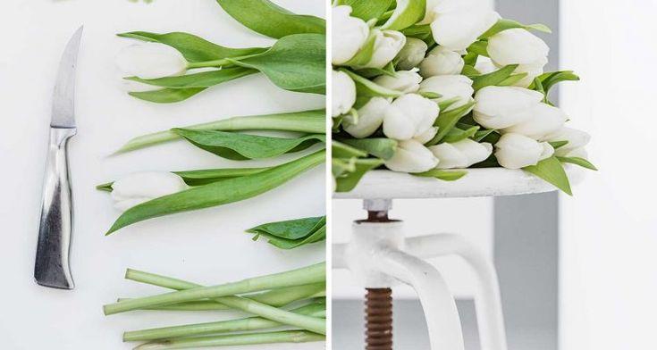 49 best fr hling images on pinterest january natural materials and tulip. Black Bedroom Furniture Sets. Home Design Ideas
