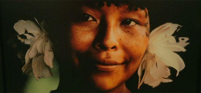 Visão sobre os Yanomami