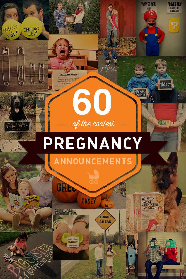 Get inspired by this collection of 60 of the coolest pregnancy announcements from pregnantchicken.com