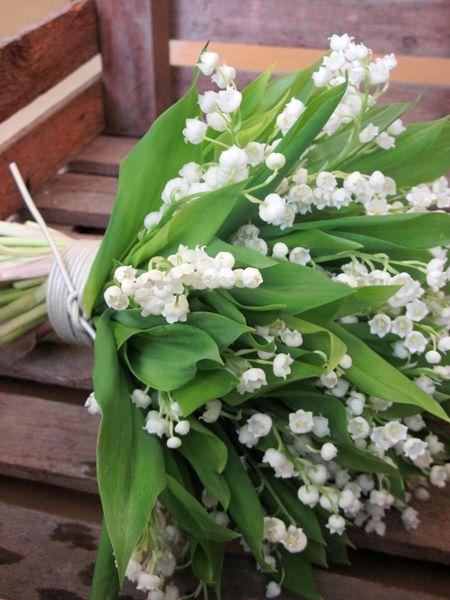 Ανθοπωλείο S. Kokkinos   Στολισμός Γάμου   Στολισμός Εκκλησίας   Αποστολή Λουλουδιών   Διακόσμηση Βάπτισης   Στολισμός Βάπτισης   Γάμος σε Νησί - στην Παραλία - στην Κρήτη - νυφικά μπουκέτα