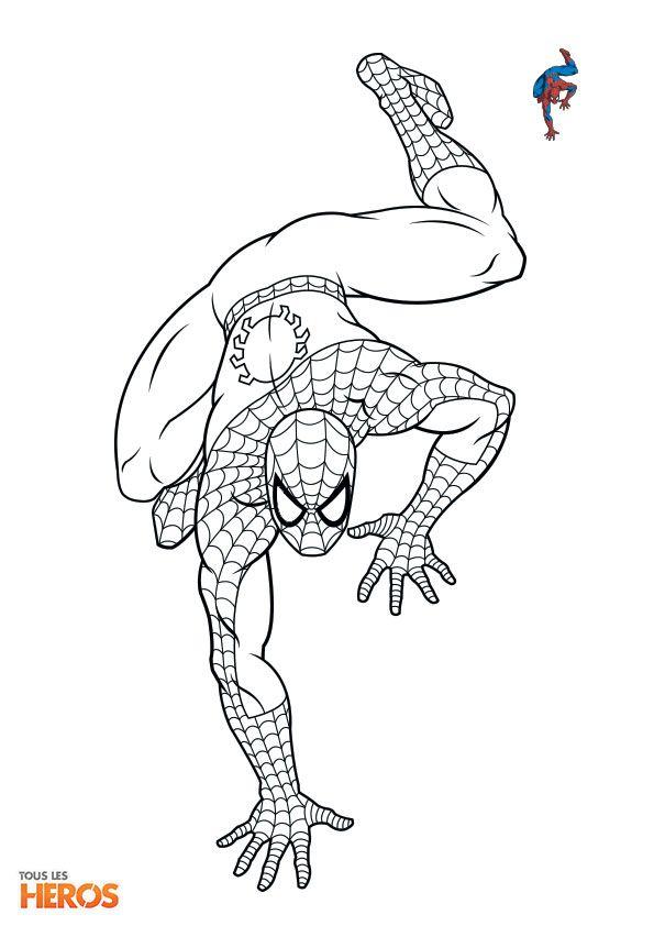 Coloriez #Spiderman le #superhéros préféré des adolescents ! #coloriage sur www.tous-les-heros.com !