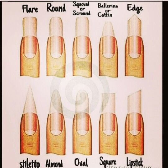 17 best All About Nail Shapes images on Pinterest | Nails shape ...