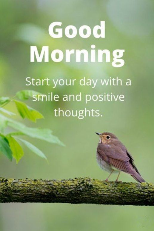 cool Good Morning Quotes: Good Morning Start Your Day Smile And Positive Thoughts