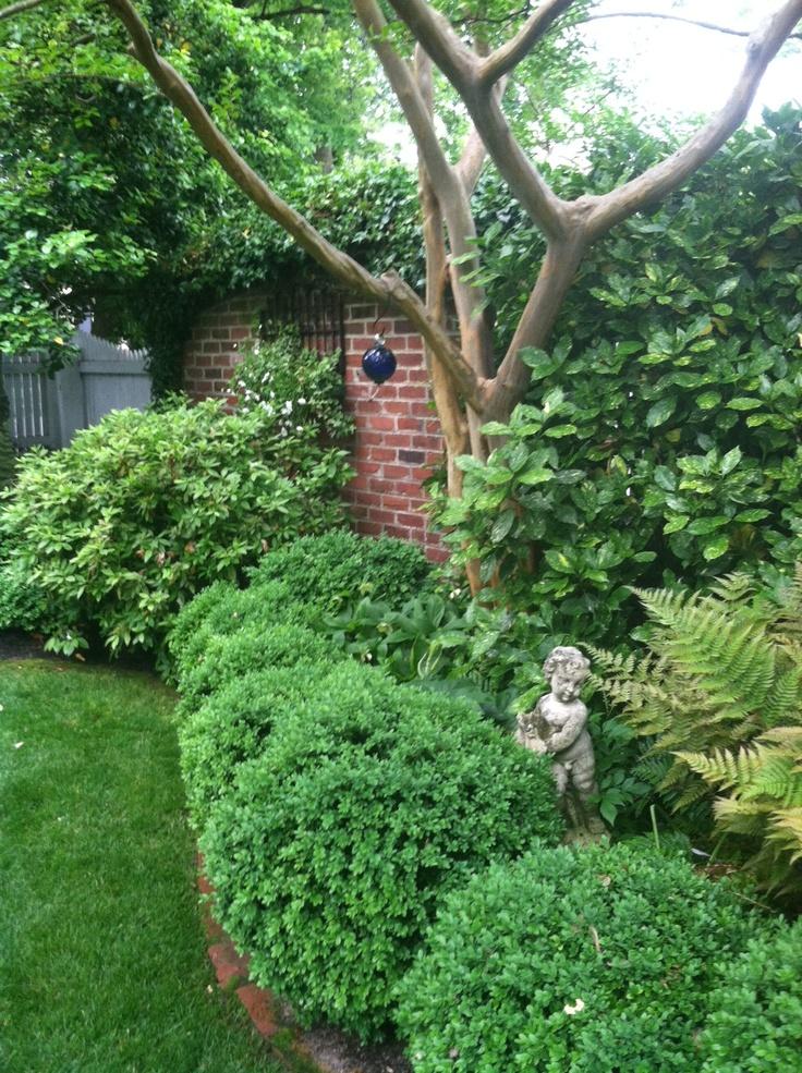 141 Best Images About Evergreen Garden Design On Pinterest