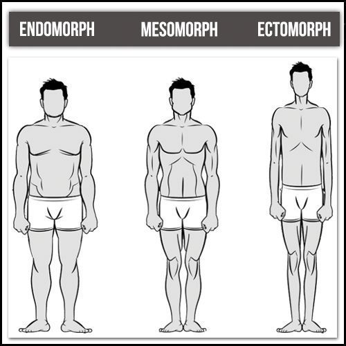 Did you know there are seven typical male body shapes? The most common categorie…