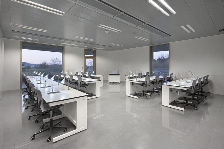 #Eina chair collection. Designed by Josep Lluscà for Enea Design. #hospitality #bar #restaurant #contract #interiordesign #school