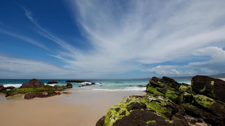 Eden - New South Wales - Australia