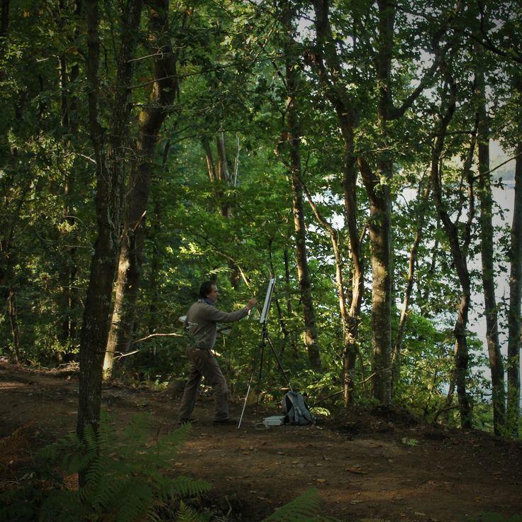 Pazo de Orto: the forest.