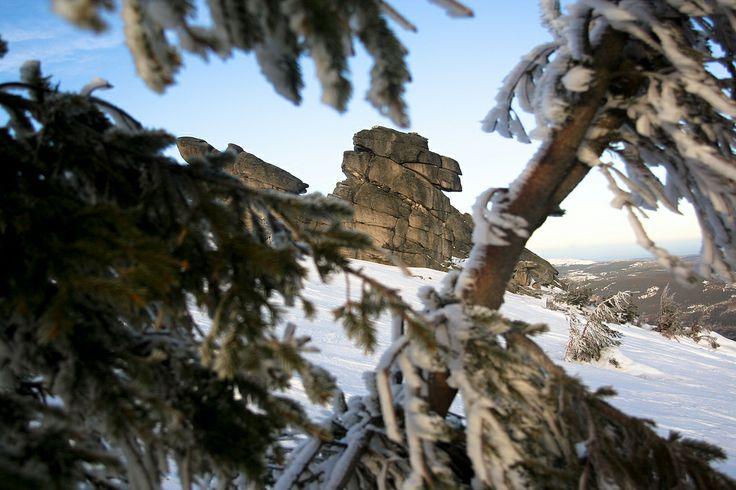 http://www.polen.travel/sv/nationalparker/nationalparken-karkonoski