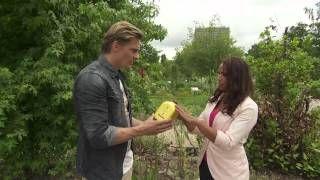 Forever living on RTL4 TV show Altijd jong - YouTube