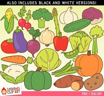 Vegetable Clipart, Food Group Clip Art - 46 Graphics (23 in color, 23 in black and white) - 300 DPI files (nice crisp printing!).