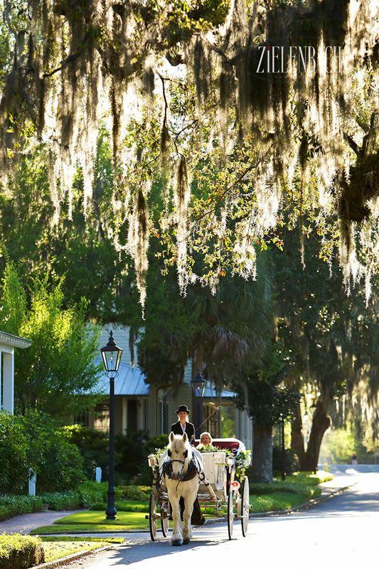 South Carolina Weddings, Luxury Resort Weddings South Carolina - Palmetto Bluff