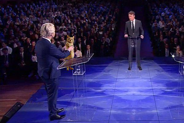 De oplettende kijker zal het niet ontgaan zijn: PVV-leider Geert Wilders gooide zelfs zijn kat in de strijd, tijdens hettelevisiedebat van EenVandaag. Het beestje is sinds vorige weekde nieuwe mascotte van de PVV-campagne. Het gezin Wilders werd afgelopen woensdag uitgebreid met twee asielkatten. De dieren zijn populair en spelen daarom een grote rol in de verkiezingscampagne. Eén van de katten [...]