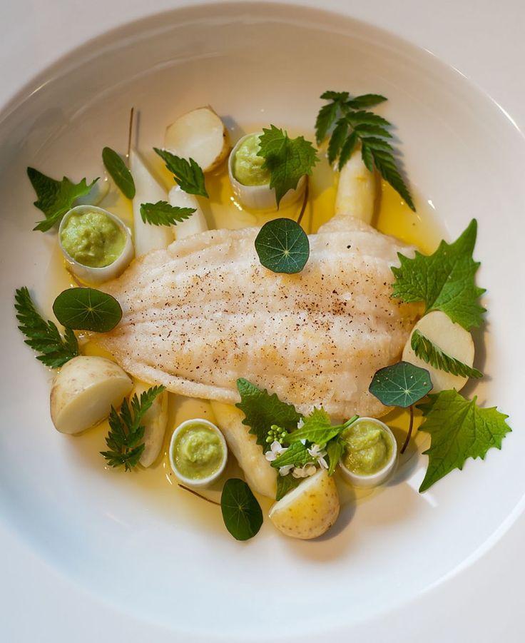 rodtunge-med-hvide-asparges-porrecreme-brunet-smor-og-urter-fra-skoven