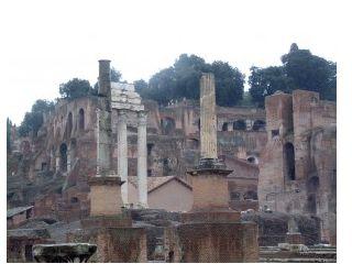 En af roms 7 høje med uhyre stor betydning for den romerske verden. Traditionen fortæller, at tvillingerne Romulus og Remus grundlagde Rom på denne høj 753 f. Kr.