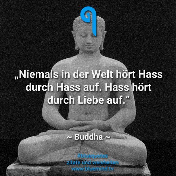 Buddha war der Begründer des Buddhismus und brachte viele weise Sprüche hervor. Wir haben die besten 15 Buddha Zitate für Euch gesammelt.