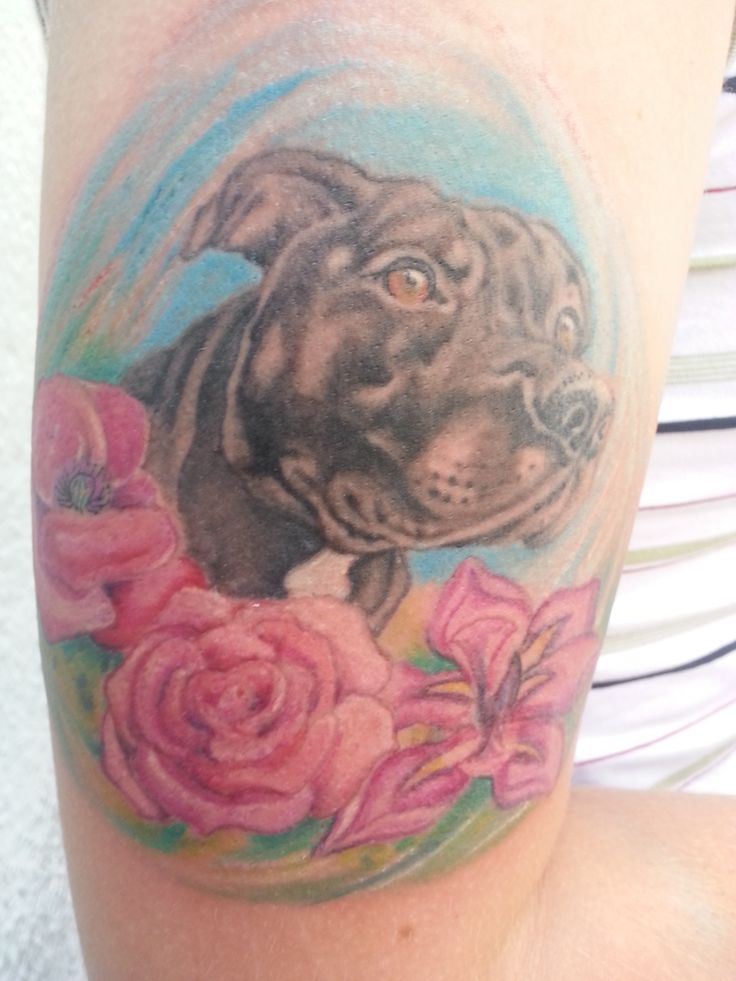 Cane con composizione floreale