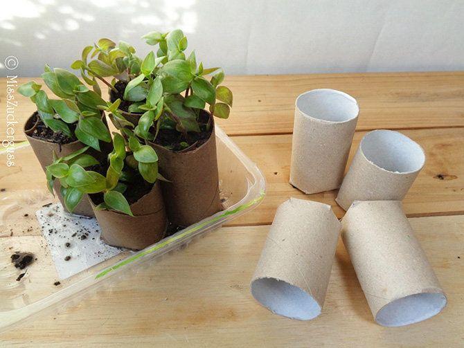 9 simple aber tolle Re-/Upcycling-Ideen, DIY, zum Bsp. Pflanztöpfchen aus Papprollen