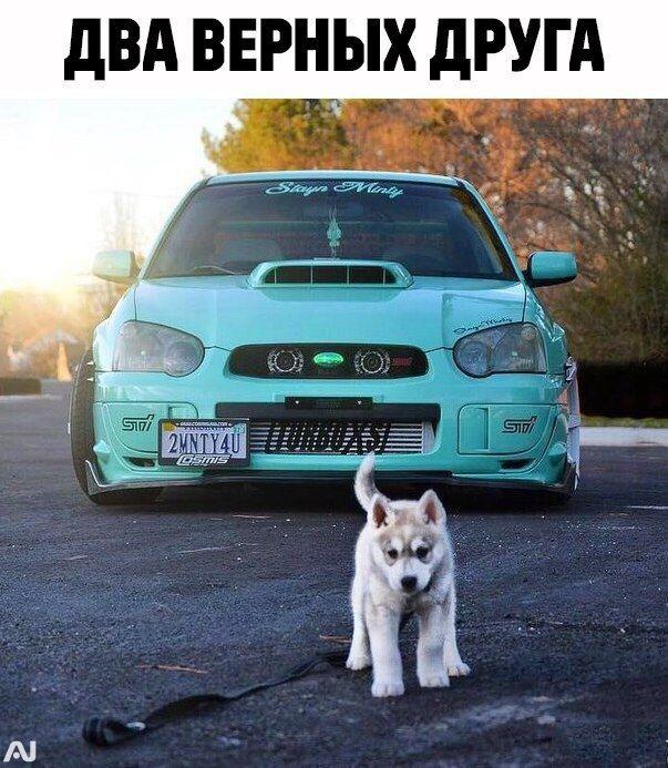 Auto Nation Subaru >> Auto Nation An Jdm Cars Auto Stance Subaru Wrxsti Color