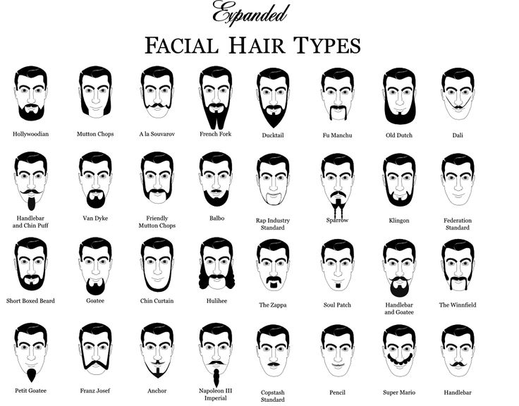 Amazing 1000 Ideas About Types Of Facial Hair On Pinterest Men39S Beard Short Hairstyles Gunalazisus
