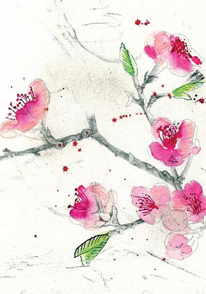 Blossom by Sarah Gabriel | Lauriston Press | Artist Studio & Gallery | Kyneton & Armadale Victoria