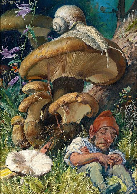 "art, illustration, mushroom, woodland, flower, floral, fern, gnome, figure, man, sitting, front. //  "" Snail and a Dwarf "" -artist W. Wiegand"