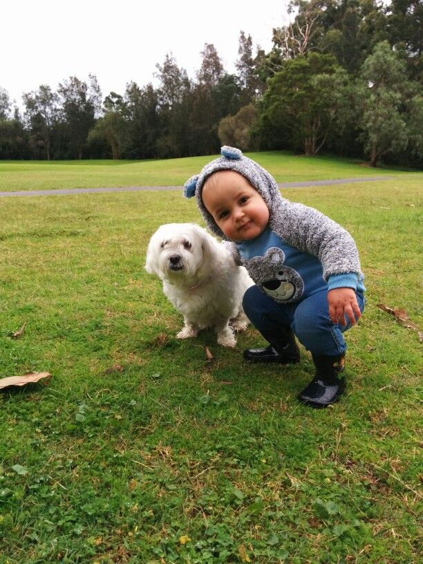 Dog and child at the park