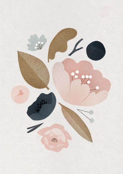 Peonies by Clare Owen