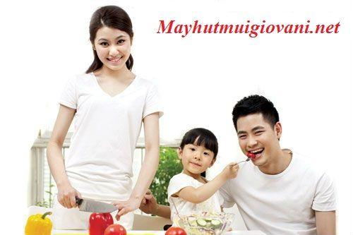 http://mayhutmuigiovani.net/bep-tu-giovani-g-262t-4104760.html