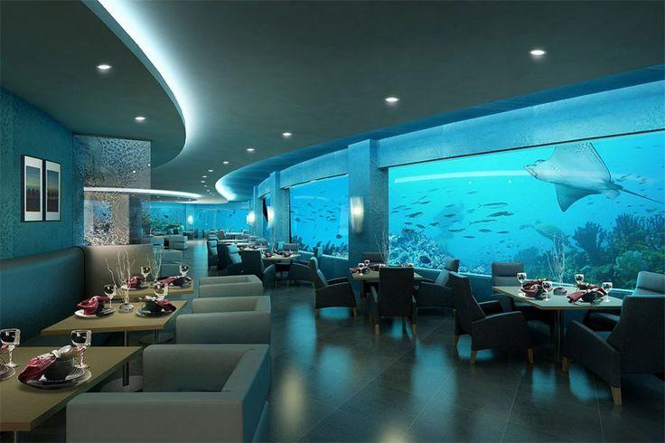 Ithaa Undersea Restaurant Interior Restaurant