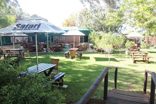 #Cafe @ #Safari, our garden area lovely to relax in with a meal after an exiting tour.