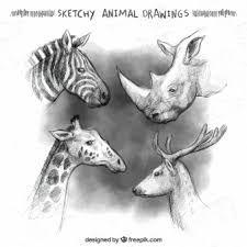 Znalezione obrazy dla zapytania rysunki zwierzat