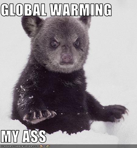 Global Warming My Ass 33