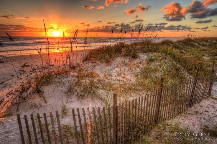 17 best images about favorite travels on pinterest dubai for Landscaping rocks daytona beach