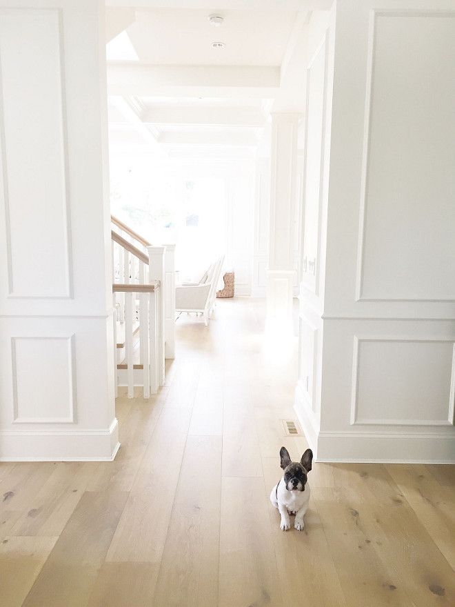 Today's #inspiration! We cannot get over this adorable pup and the beautifully crafted white oak hardwood flooring! http://ow.ly/maNt30dnAfD