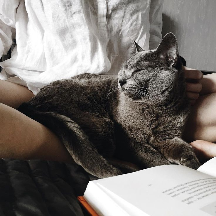 Books and cuddles
