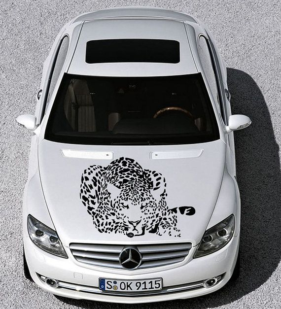 Best Car Hood Sticker Images On Pinterest - Decal sticker for car