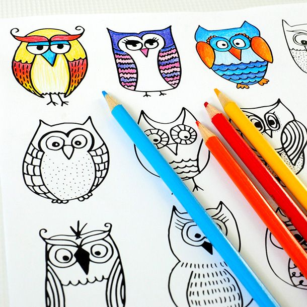 Owl Coloring Page - Here's a great question for you...did you know that a group of owls is called a parliament? I totally would have failed that question on an exam. It's been a while now since I'v...