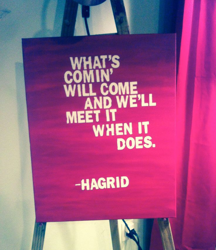 I'm putting Harry Potter quotes on canvas and putting them EVERYWHERE in my house. <3