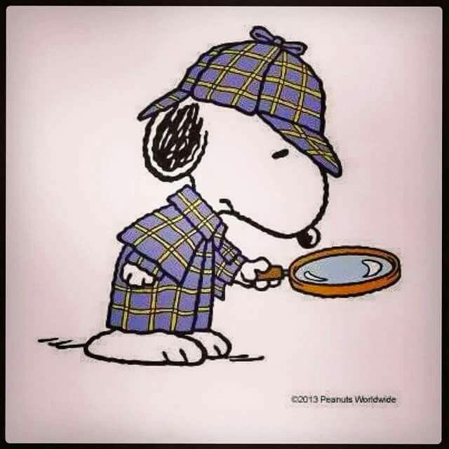 Snoopy Investigator
