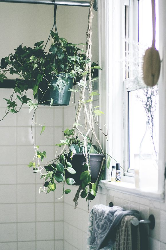 8 Ways To Make A Rented Apartment Feel Like Home | Free People Blog #freepeople