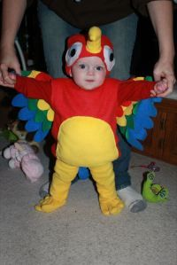 baby parrot costume tutorial